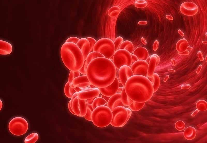 Acenocoumarol là thuốc chống đông máu