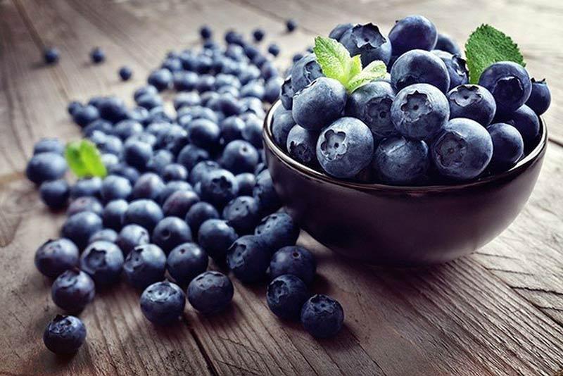 Bà bầu nên ăn hoa quả gì: Mọi người chớ bỏ qua quả việt quất