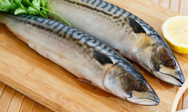 Chuẩn bị mang thai không nên ăn gì: Mọi người hãy tránh xa các loại cá có chứa thủy ngân