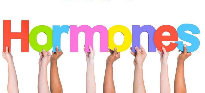 Hoocmon là gì và lợi ích của việc tăng hoocmon nam?