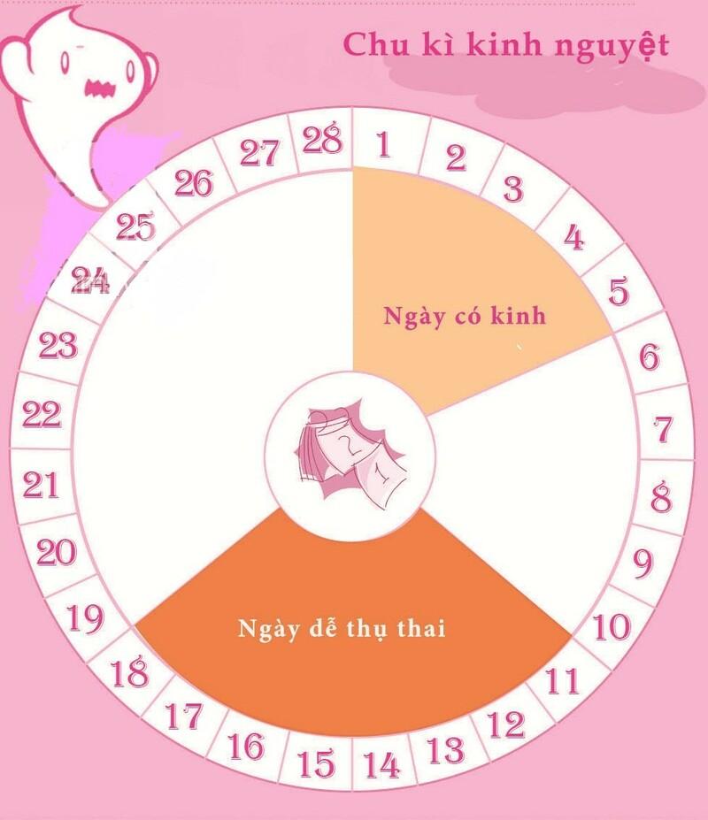 Nhiều phụ nữ có câu hỏi quan hệ ngày nào dễ thụ thai nhất