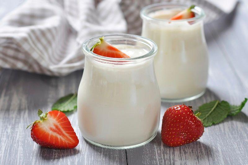 Trong sữa chua chứa nhiều vi sinh có lợi cho sức khỏe