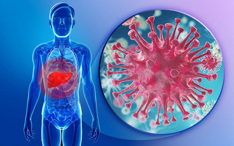 Viêm gan b là căn bệnh truyền nhiễm gây ra bởi virus HPV