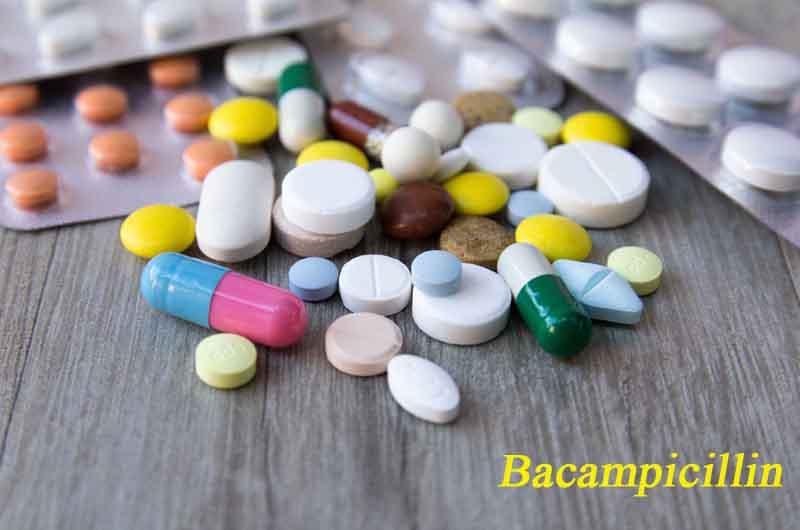 Bacampicillin là thuốc ngăn ngừa vi khuẩn gây nhiễm khuẩn trong cơ thể