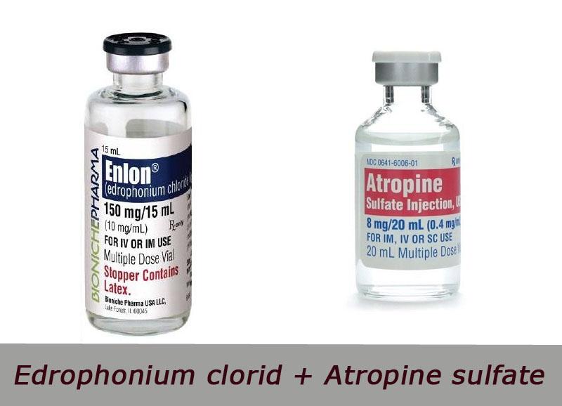 Edrophonium clorid + Atropine sulfate là thuốc gì?