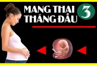 Mang thai 3 tháng đầu