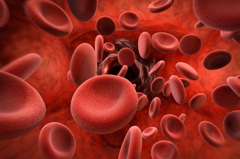 Các bệnh lý về máu hoặc rối loạn chảy máu có thể gây ảnh hưởng nhất định đến thuốc Edoxaban
