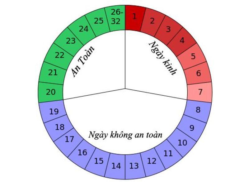 Chu kỳ kinh nguyệt là chuỗi quá trình tự nhiên của cơ thể