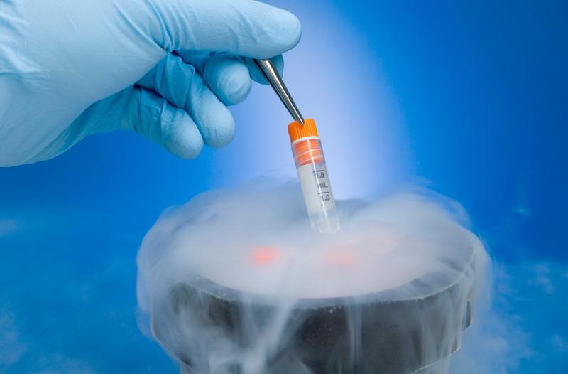 Có thể đông lạnh trứng hoặc tinh trùng trong thụ tinh nhân tạo
