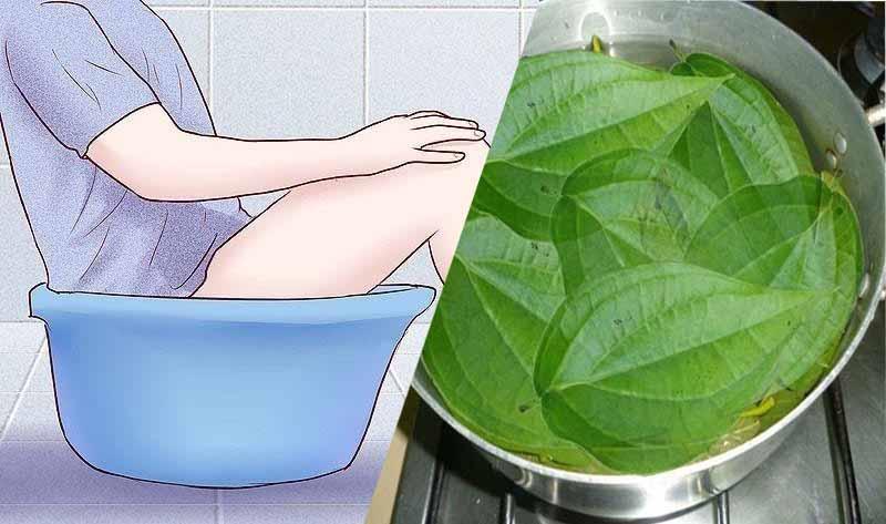 Không dùng nước lá trầu không ngâm hay thụt rửa vùng kín