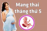 Mang thai tháng thứ 5