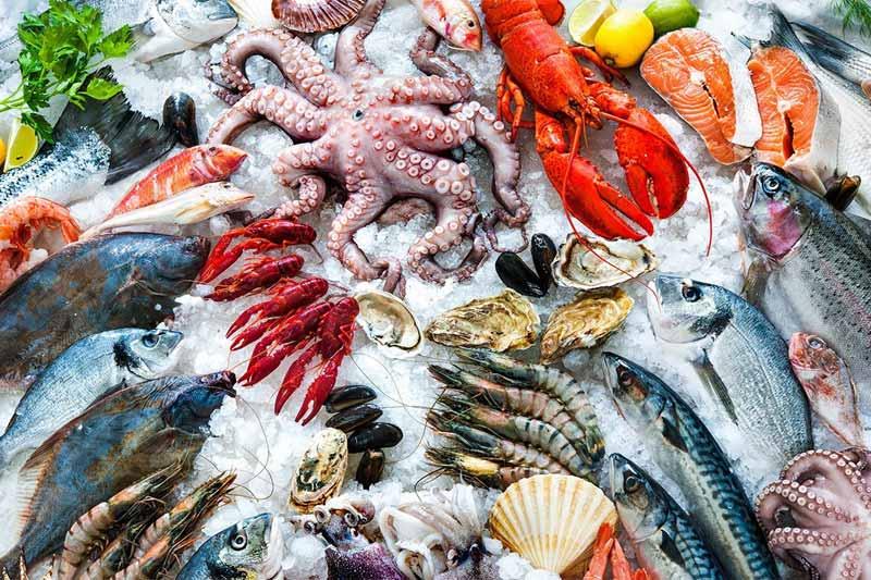 Mang thai tuần thứ 5 nên ăn gì? - Mẹ nên ăn nhiều hải sản