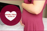 Mang thai tuần thứ 6