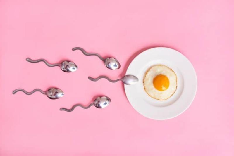 Mất ít nhất 45 phút để tinh trùng gặp trứng kể từ khi xuất tinh