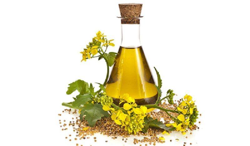 Người bị bệnh gout nên sử dụng các loại dầu thực vật thay cho mỡ động vật