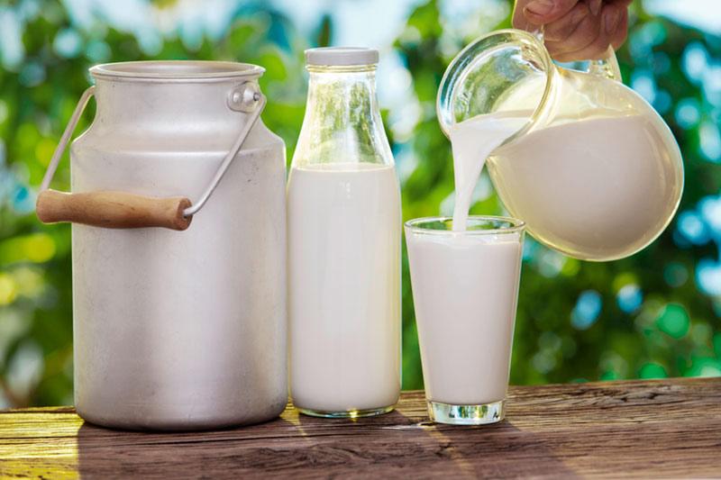 Sữa chưa tiệt trùng không tốt cho mẹ bầu