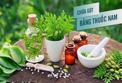 cách chữa bệnh gout bằng thuốc nam