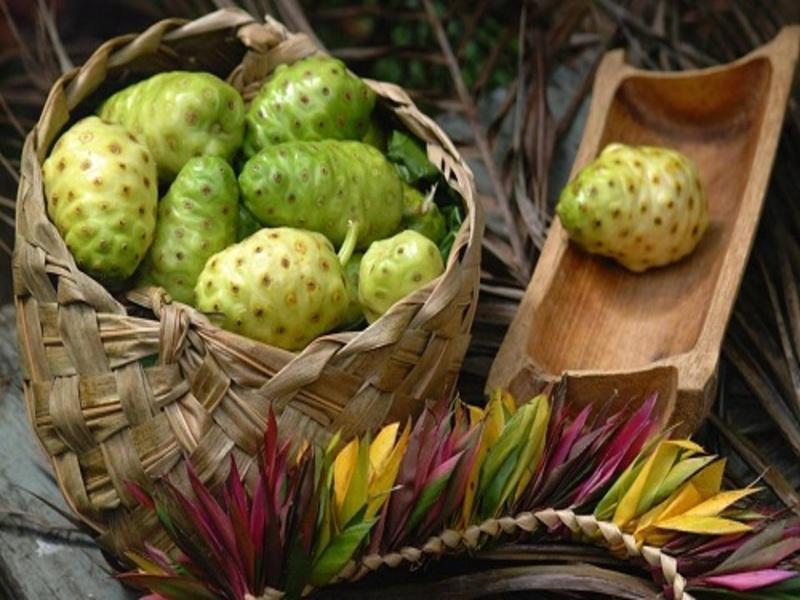 Trị mụn cóc bằng trái nhàu mang lại hiệu quả tốt cho người bệnh