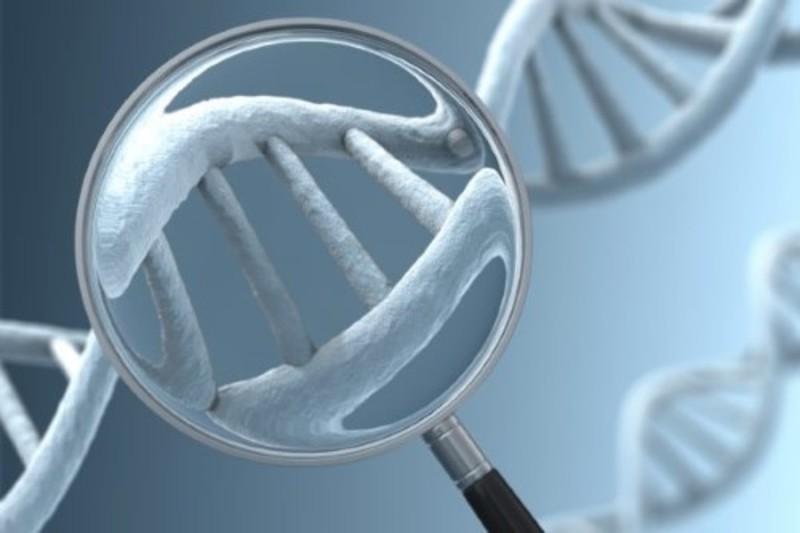 Xét nghiệm di truyền tiền cấy ghép cũng có thể giúp lựa chọn giới tính thai nhi