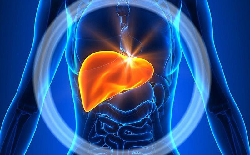 Bệnh lý về gan có thể gây ảnh hưởng đến tác dụng của thuốc