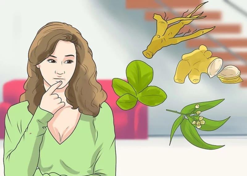 Dùng thảo mộc để kích thích trứng rụng tự nhiên