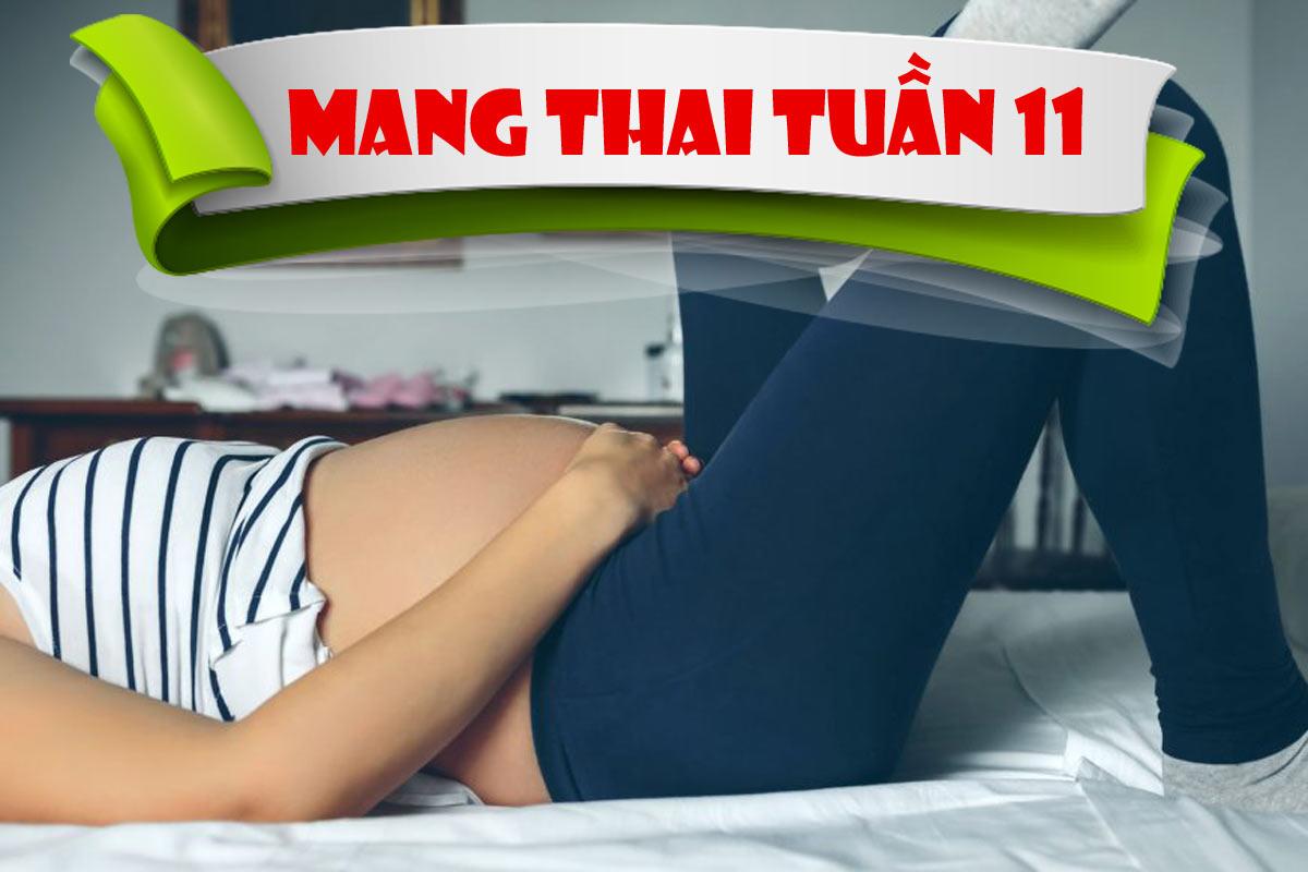 Mang thai tuần 11