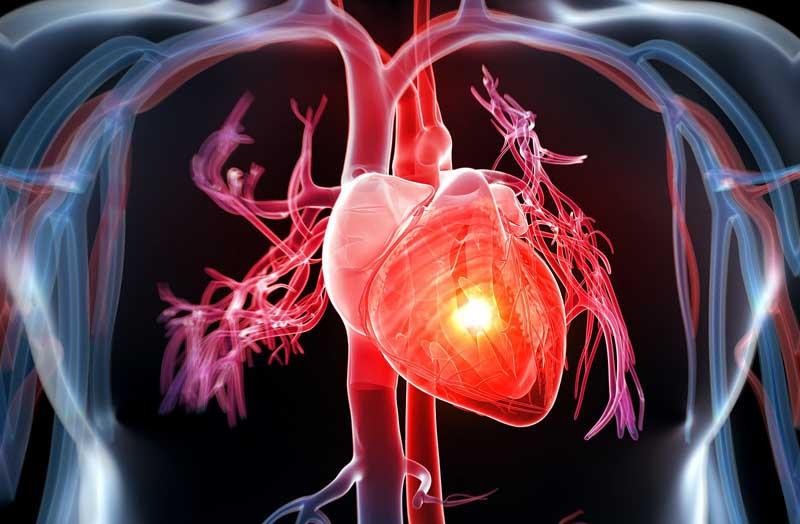Thuốc Nalmefene có thể bị ảnh hưởng bởi các bệnh lý về tim mạch