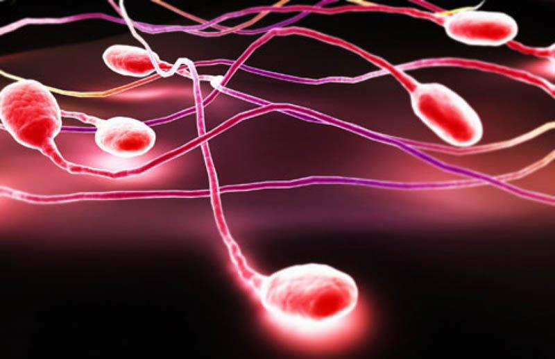 Nguyên nhân nào dẫn đến tình trạng tinh trùng có máu?