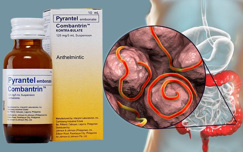 Thuốc Pyrantel có cả dạng dung dịch uống