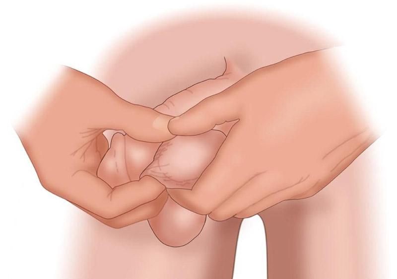 Xoa nắn tinh hoàn giúp kích thích lưu thông tuần hoàn máu đến dương vật