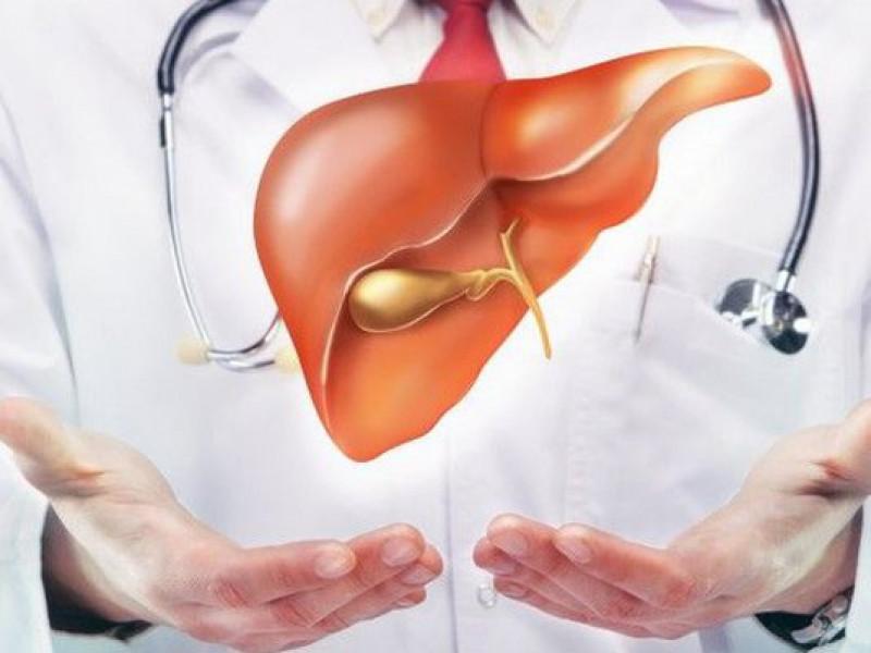 Bảo vệ chức năng gan giúp phòng chống nổi mề đay