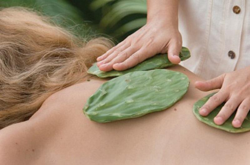 Xương rồng hơ nóng chườm lên lưng giúp giảm đau nhức hiệu quả