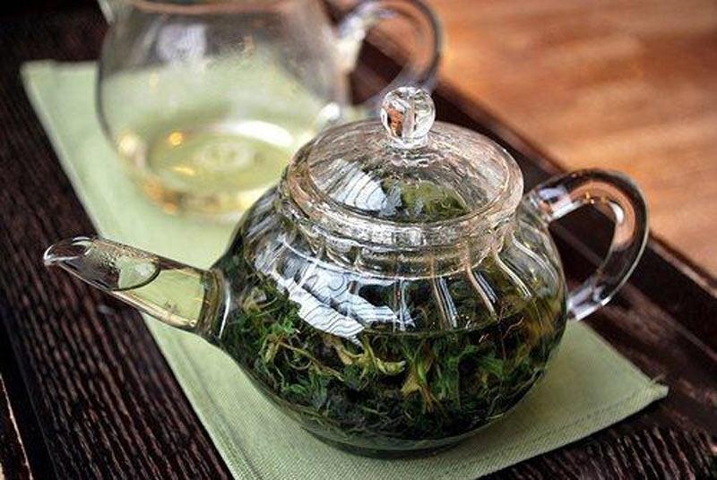 Tách trà ngải cứu nhiều tác dụng cho sức khỏe