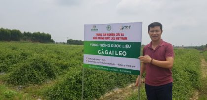 Vườn dược liệu Vietfarm