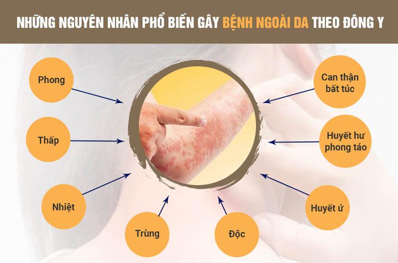 Những nguyên nhân chủ yếu gây bệnh da liễu theo Đông y