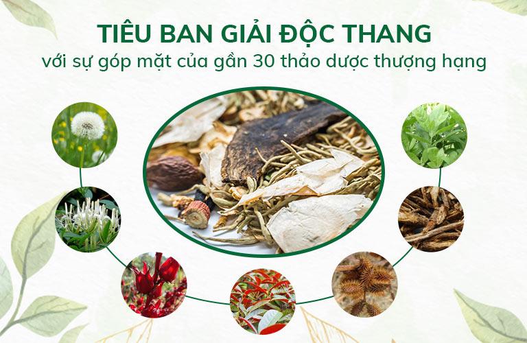 Tiêu ban Giải độc thang hội tụ thảo dược thiên nhiên đạt chuẩn chất lượng GACP - WHO