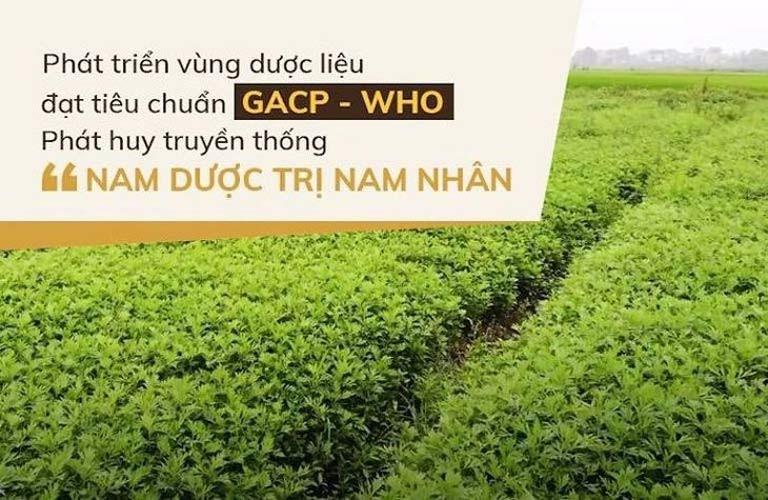 Đỗ Minh Đường đã phát triển 3 vườn dược liệu lớn