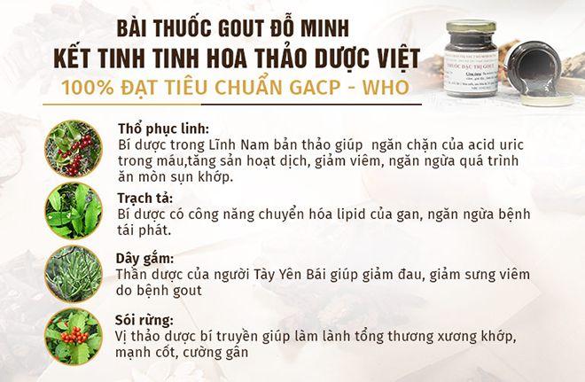 Thành phần bài thuốc Gout Đỗ Minh